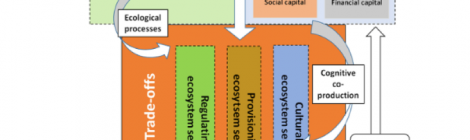 Understanding a social-ecological system through stakeholder dialogue
